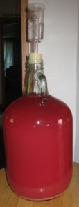 Currant Wine fermenting with airlock in place