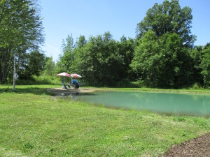Our Pond Looking Toward the Beach