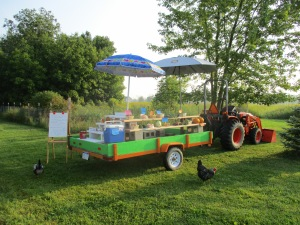 Our Farm Sales Wagon
