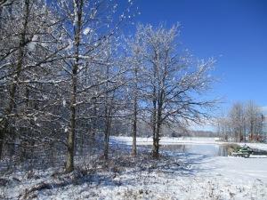 First snow 2015 November 23